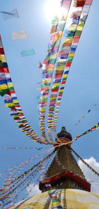 Die Amitabha Stiftung